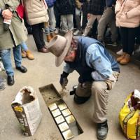 Cerimonia della posa delle pietre d'inciampo della famiglia Fano