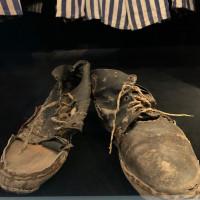 Gli ultimi passi con le tue scarpe dovevano essere veloci: delle tue te ne liberavi in fretta. Poi ti davano queste e non le lasciavi più. Correvi, lavoravi, camminavi, faticavi, piangevi, facevi la fame. Nella pioggia, al sole, nella neve, nel fango e nella polvere. Non era una scelta. O queste o non avevi altro - Matilde Baldassarre, Liceo ulivi